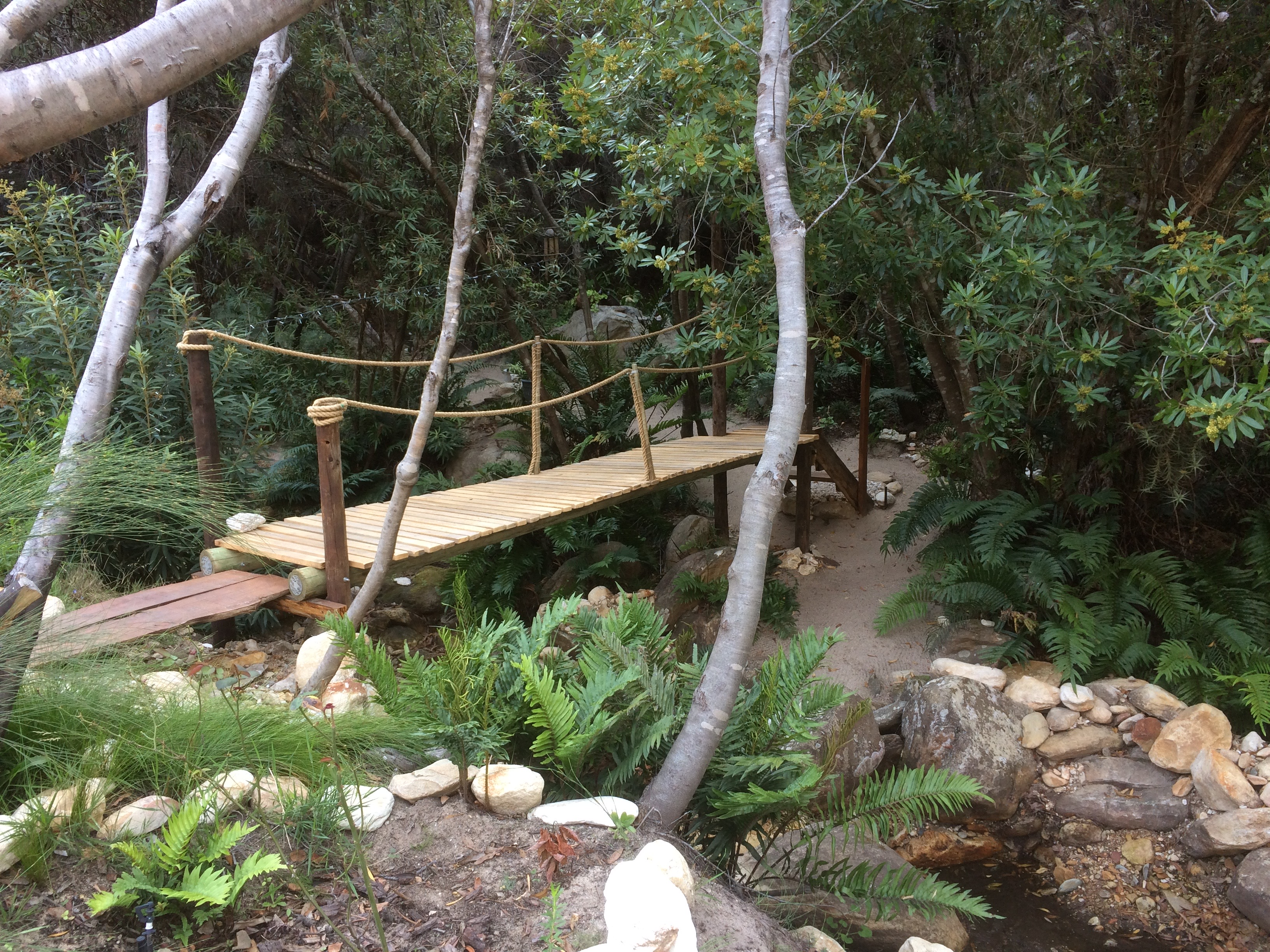 Our entrance and bridge to our Zen garden